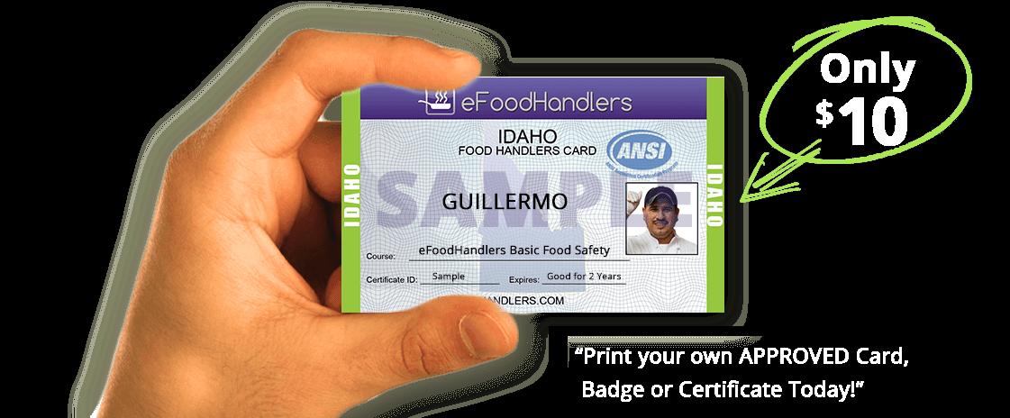 City Food Handlers Permit